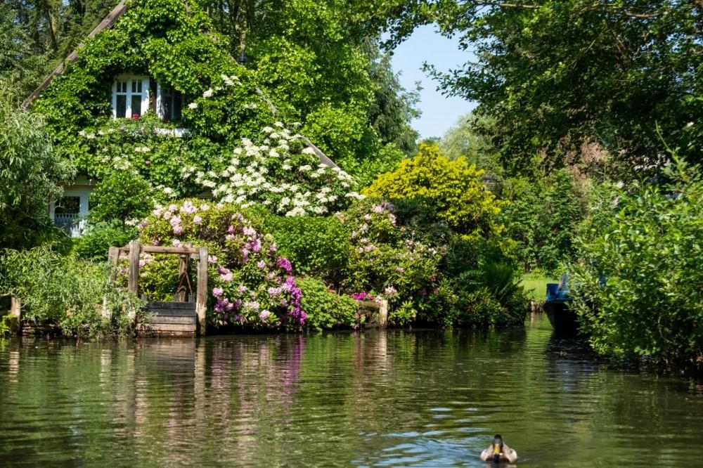 Haus mit vielen Blumen im Spreewald